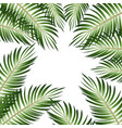 2d realistic palm leaves on white background vector image vector image