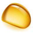 amber on white background for design vector image