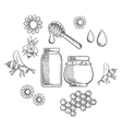 Beekeeping and fresh honey icons vector image