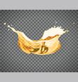 beer splash isolated on light background vector image