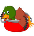 cartoon funny duck being cooked in a pan vector image