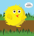 Cute baby chicken walking on ground vector image vector image
