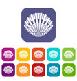 pearl shell icons set vector image vector image