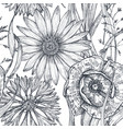 seamless pattern with hand drawn poppy and vector image