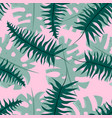 seamless tropical pattern with fern and monstera vector image