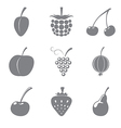 Set of gray icons of fruits vector image vector image
