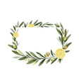 watercolor frame olive branches and vector image vector image