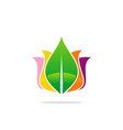 colored beauty leaf cosmetic logo vector image vector image