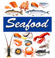 Different kind of seafood and text vector image vector image