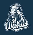 marine sail walrus with pipe nautical sailor logo vector image vector image