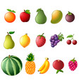 set collection of fresh fruit vector image vector image