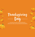 thanksgiving day pumpkin background collection vector image vector image