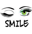 winking eyes vector image