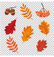 autumn set lsolated vector image