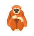 gibbon primate mammal monkey in wildlife vector image