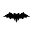 bat silhouettes - Halloween vector image vector image