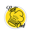 best chef cooking vector image