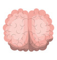 brain top view in realistic colorful silhouette vector image