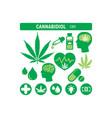 cannabis cannabidiol weed oil medicinal products vector image vector image