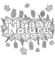 nature word - coloring page for adults and vector image vector image
