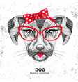 retro hipster animal dog hand drawing muzzle vector image