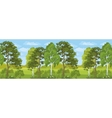 Seamless Horizontal Landscape Summer Forest vector image vector image