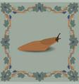 slug color vector image vector image