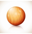 Yellow isolated wooden ball vector image vector image