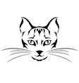 head cat tattoo vector image