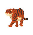 aggressive tiger walking wild cat predator vector image