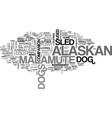alaskan malamute the nordic sled dog text word vector image vector image