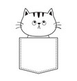 cat in the pocket looking up doodle linear sketch vector image vector image