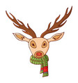 deer head in a scarf vector image