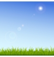 Green grass on a clear blue sky background vector image vector image