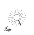 magnifier icon on sunburst vector image