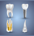 set of 3d realistic clean and dirty tooth