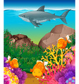Shark and fish swimming in the sea vector image vector image