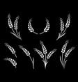 abstract wheat ears icon logo food set vector image vector image