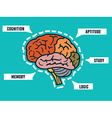 Capabilities of the human brain Mindmap and vector image vector image