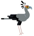 grey ostrich in the wild life flat animal vector image