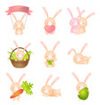 set of cute rabbits in different poses or holding vector image