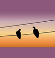 silhouettes two pigeons sitting on a wire vector image