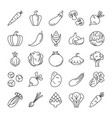 vegetable icons set collection products vector image vector image