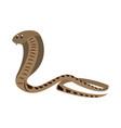 cobra african snake vector image