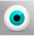 eye blue realistic 3d eyeball irispupil icon vector image