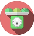 Flat icon for kitchen scales with apples vector image