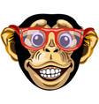 head cartoon chimpanzee vector image
