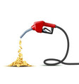 stream gold coins pours from fuel handle vector image