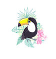an of a nice toucan in format a cute toucan bird vector image vector image