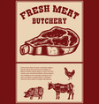 fresh meat poster template with meat cut on vector image